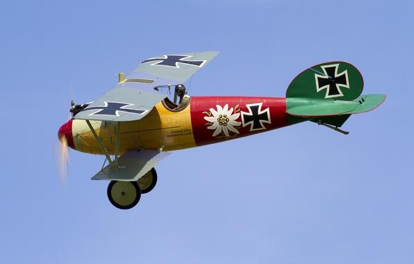 Picture the sky, flight, the plane, biplane