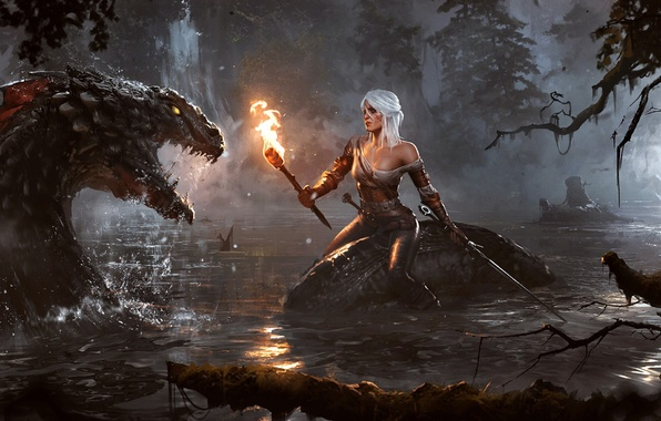 Picture water, night, lake, woman, sword, torch, monster, witcher, The Witcher 3: Wild Hunt, Lion Cub …