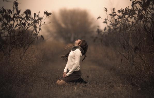 Photo wallpaper girl, bokeh, nature