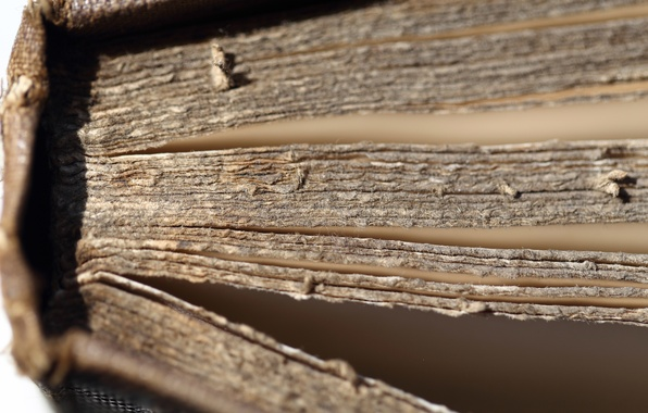 Picture macro, book, old book