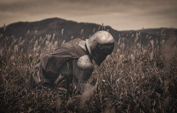 Picture field, grass, nature, metal, armor, warrior, helmet, knight