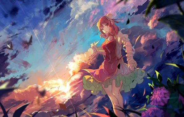 Picture the sky, girl, clouds, sunset, flowers, anime, art, touhou, bai felt the shao the sun, …