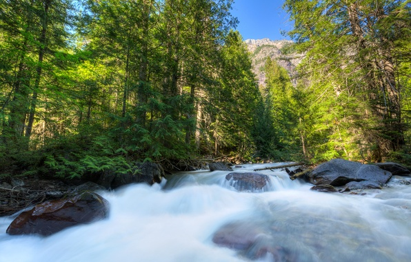 Picture forest, the sky, trees, mountains, river, stones, stream, USA, glacier national park, montana