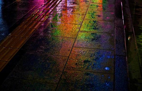 Picture night, rain, street, rainbow, wet, Japan, Hiroshima