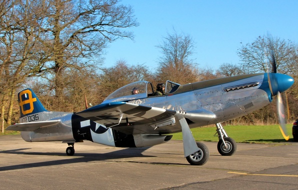 Picture Mustang, fighter, American, P-51D, single