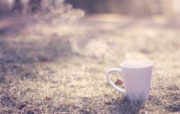 Picture greens, grass, the sun, nature, background, green, widescreen, mood, plants, mug, Cup, white, white, grass, …