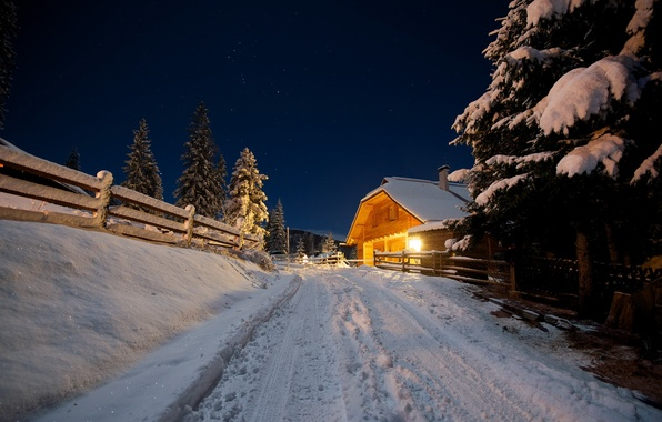 Picture winter, road, night, house