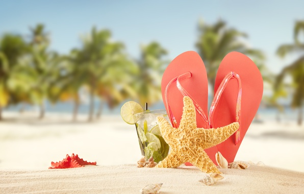 Picture sand, sea, beach, summer, the sun, stars, palm trees, stay, cocktail, shell, summer, beach, slates, …