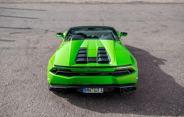 Picture machine, green, tuning, ass, Lamborghini, supercar, Spyder, exhausts, Novitec, Torado, Huracan, novitek