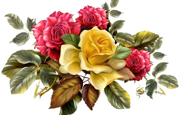 Picture leaves, flowers, background, roses, bouquet, yellow, spikes, red
