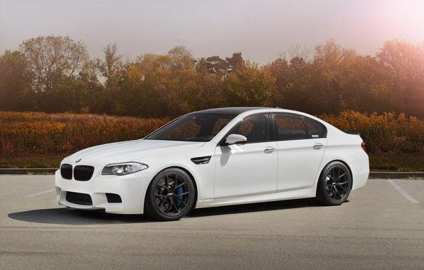 Picture white, bmw, BMW, Parking, white, wheels, bbs, f10, sports sedan, carbon fiber roof
