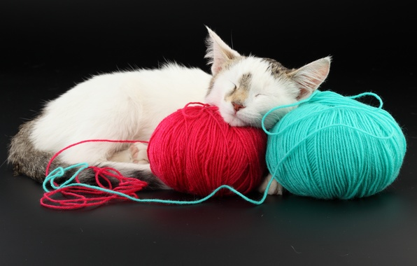 Picture cat, red, blue, balls