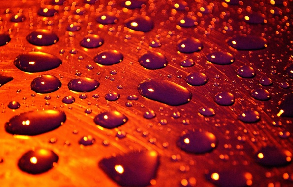 Picture water, drops, surface, macro, drops of rain