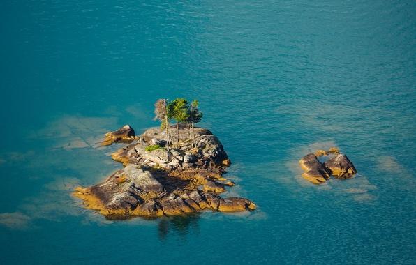 Picture sea, water, trees, lake, stones, rocks