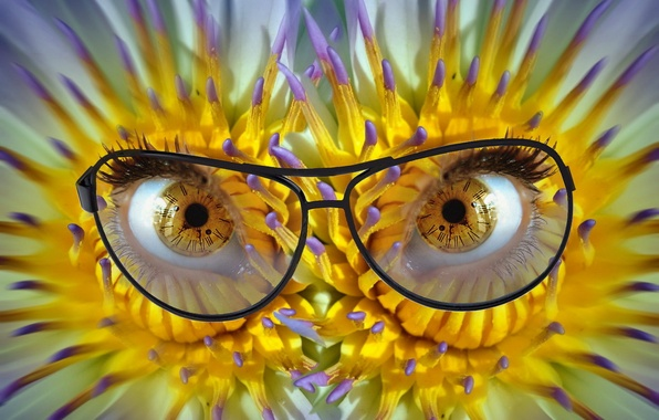 Picture eyes, flowers, glasses, dial, pupils