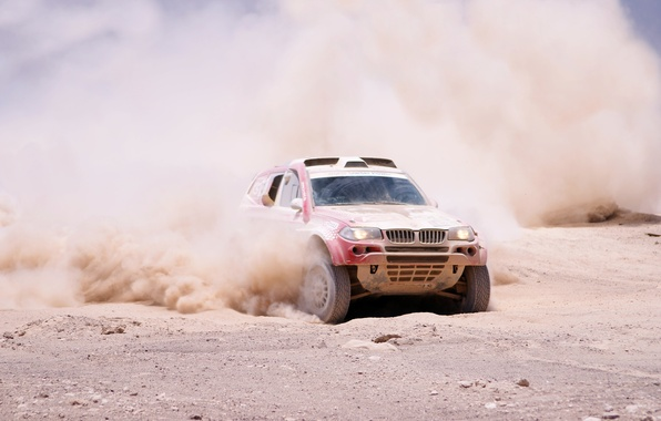 Picture Dust, BMW, Sport, BMW, Rally, Dakar, SUV, Rally, The front