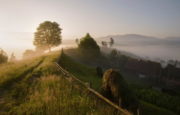 Picture summer, fog, morning, village, Carpathians