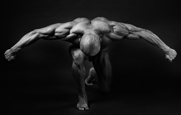 Picture muscles, pose, back, arms, bodybuilder