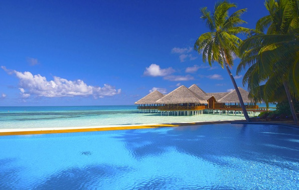 Picture sand, sea, beach, the sky, clouds, Palma, palm trees, the ocean, pool, houses, sunbeds