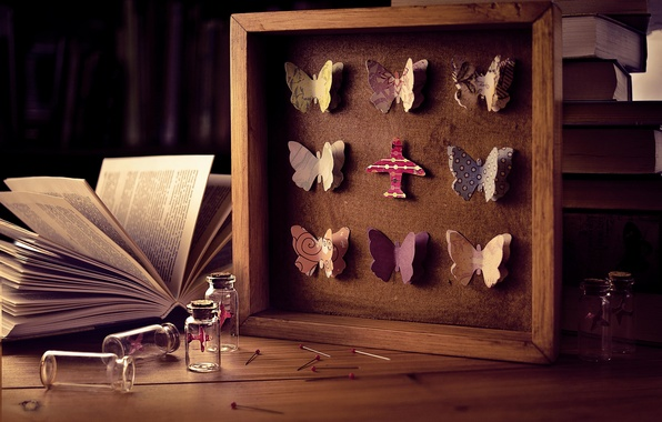Picture butterfly, needles, bubbles, books, frame, bottle, pins