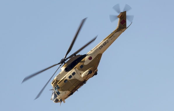 Picture helicopter, average, transport, Puma, SA-330