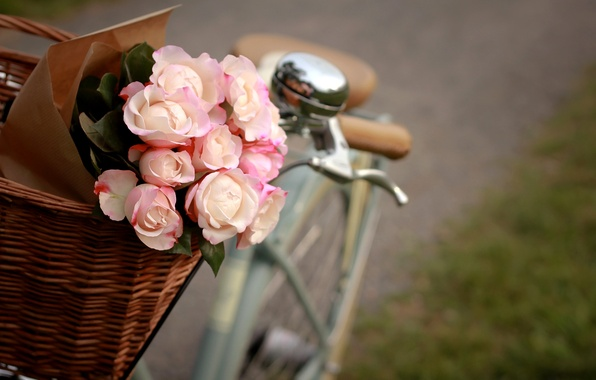 Picture flowers, bike, basket, roses, package, pink, white
