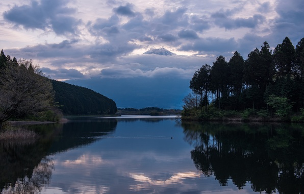 Picture forest, the sky, trees, clouds, lake, reflection, mountain, the evening, the volcano, Japan, Fuji, Honshu, …