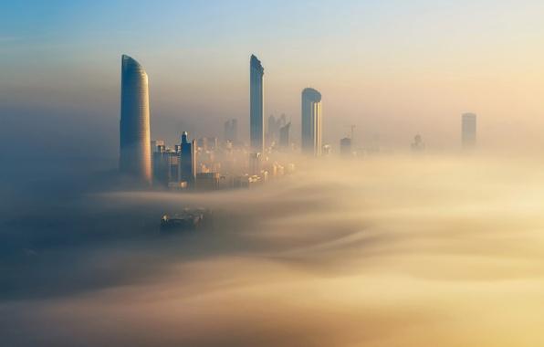 Picture the city, fog, morning, gold, Dubai, Dubai, UAE