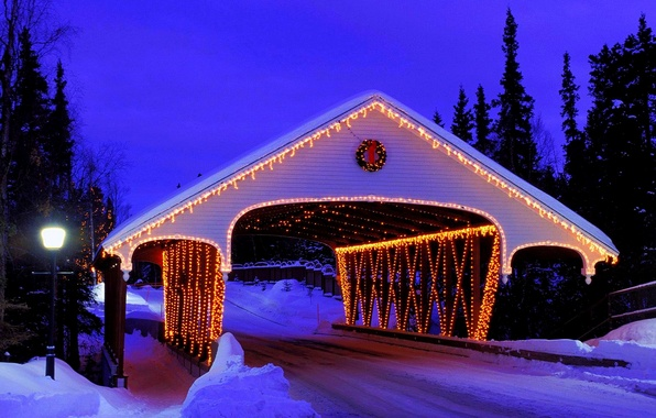 Picture winter, road, forest, snow, bridge, nature, lights, lights, Park, holiday, lantern, decoration, forest, Happy New …