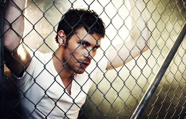 Picture look, mesh, grille, the series, the vampire diaries, Joseph Morgan, Klaus, Joseph Morgan, The vampire …