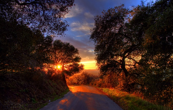 Picture road, the sun, trees, sunset, mountains, shadows