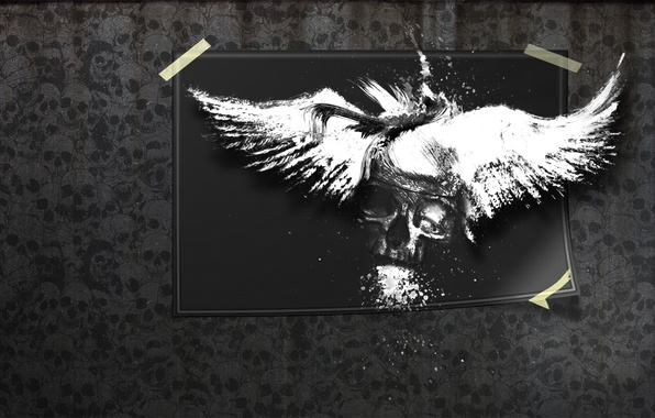 Picture photo, the darkness, skull