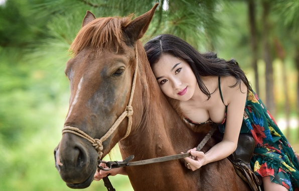 Picture summer, face, background, horse, horse, Asian