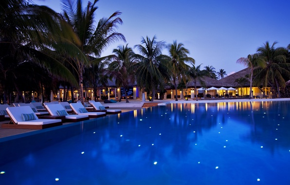 Picture trees, palm trees, the evening, pool, The Maldives, the hotel, sun loungers, Maldives, Velassaru