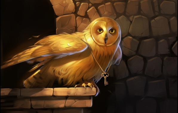 Picture eyes, gold, owl, bird, wings, key, art