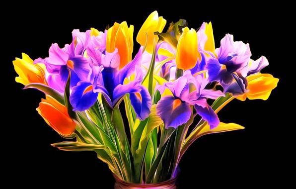 Picture line, rendering, paint, Tulip, bouquet, petals, iris