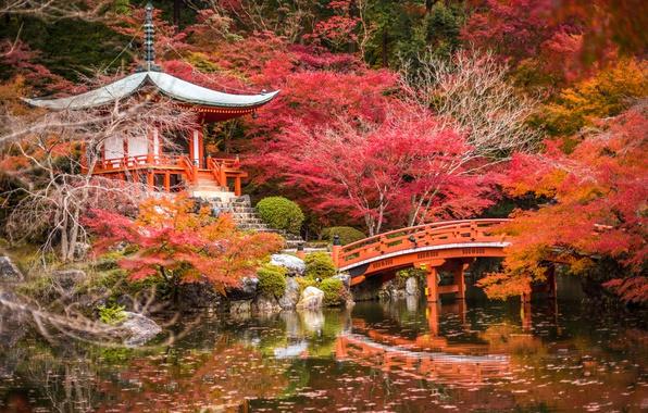 Picture autumn, trees, pond, Park, stones, Japan, pagoda, the bridge, gazebo, Kyoto, the bushes, colorful