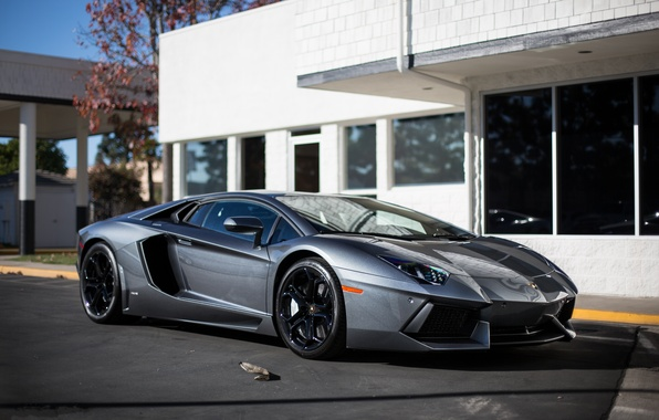 Picture reflection, grey, the building, Windows, lamborghini, side view, grey, aventador, lp700-4, Lamborghini, aventador