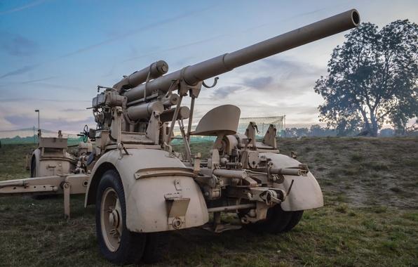Picture war, gun, gun, second, world, Anti-aircraft gun, 88-mm anti-aircraft, FlaK