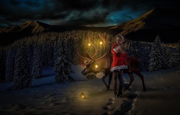 Picture girl, deer, Winter Wonderland