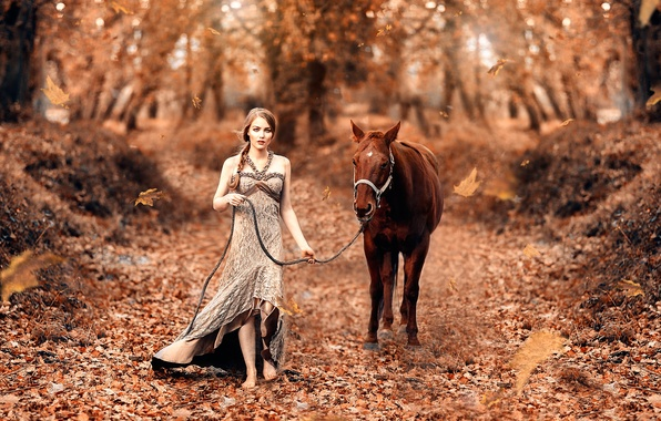 Picture autumn, leaves, girl, horse, Fairy tale, Alessandro Di Cicco