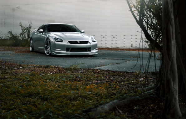Picture road, wall, lawn, silver, nissan, wall, front view, road, Nissan, gtr, gtr, r35, silvery