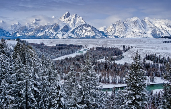 Picture winter, forest, the sky, snow, trees, mountains, nature, river, valley