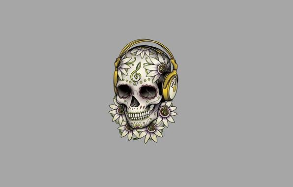 Picture flowers, patterns, skull, minimalism, head, headphones, skeleton, light background
