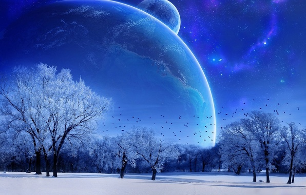 Photo wallpaper the moon, trees, the sky, blue, winter
