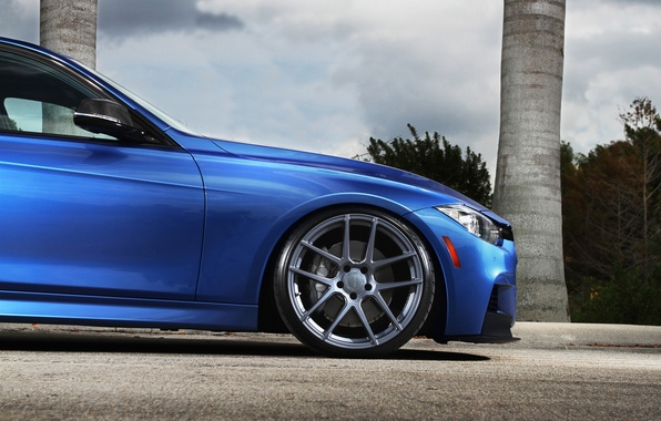 Picture blue, bmw, BMW, disk, blue, stance