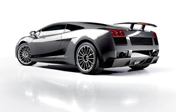 Picture white, tuning, Lamborghini, Superleggera, Gallardo