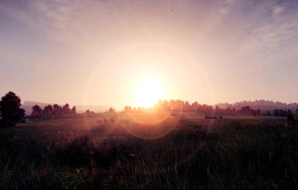 Picture field, grass, the sun, rays, halo, Dayz, Dayz Standalone