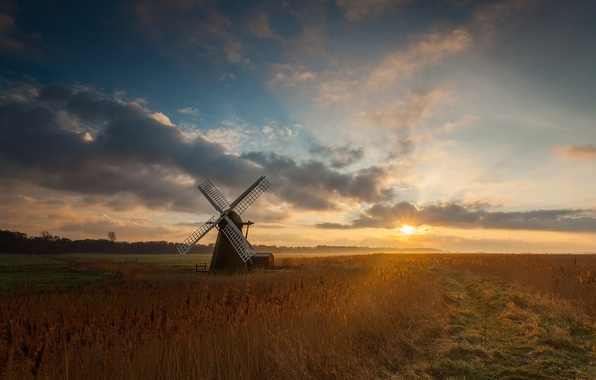 Picture field, the sun, morning, mill