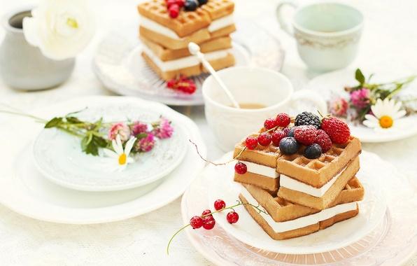 Picture raspberry, food, blueberries, cake, dessert, food, flowers, BlackBerry, sweet, cream, dessert, tea, blueberries, red currant, …